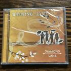 Raining Jane / Diamond Lane (NEW) - Raining Jane - Audio CD