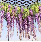 12 pcs Purple Wisteria Flower Seeds Perennial Climbing Plants Bonsai Home Garden