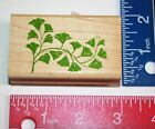 TRAILING MAIDENHAIR POSH IMPRESSIONS RUBBER STAMPEDE RUBBER STAMP WOOD MOUNTED