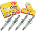 4pcs 2004 Husqvarna SM450R NGK Standard Spark Plugs 450 Kit Set Engine sq