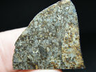 Meteorite SLD 1083 715g EXCELLENT METEORITE SPECIMEN END CUT or SLICE