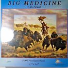SunsOut Big Medicine 1000 Piece Jigsaw Puzzle Bo Newell Native Folk Art NIB USA