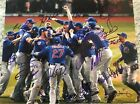 2016 Chicago Cubs Team Signed WORLD SERIES 11x14 PHOTO ZOBRIST