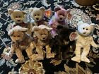Lot of TY Signature Beanie Baby Bears 1999 2000 2002 2003 2004