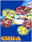 7545Decoration PosterHome Room wall design artCuban native polymitas shells