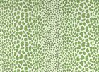 Outdoor Green White Drapery Upholstery Fabric P Kaufmann Cape Cosmos CL Apple