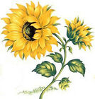 XL FuRNiTuRe SiZe BiG BoLD BRiGhT SuNFLoWeRs SHaBbY WaTerSLiDe DeCALs