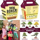 Complete Bonsai Tree Starter Kit The 5 Easiest Trees To Grow From Seed Indoors