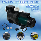Swimming Pool Circulation Water Pump 3 4 HP Water Pool Pump Filter Pump 220V US