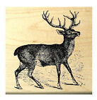 P38 Buck Deer Rubber Stamp Wood Mounted deep etched 25x225