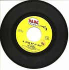 The Exciters A Little Bit of Soap Im Gonna Get Him Someday 45 RPM Vinyl Record
