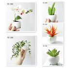 Fridge Blackboard Magnet Sticker Artificial Potted Succulent Plants Flower Home