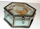 Vtg Clear Glass Trinket Box Pressed Dried Flowers