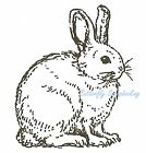 EASTER BUNNY Wood Mounted Rubber Stamp NORTHWOODS B9950 New