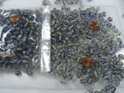 Two Pounds Oval Clear with Blue and Gold Swirls India Glass Beads Bulk NN 565
