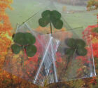 4 Leaf Clover Student Teacher Gift Scrap booking Crafts Party Four Lucky Charm