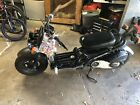 2009 Honda Ruckus Scooter motorcycle ready 2 ride Zoomer moped 50cc 4 stroke
