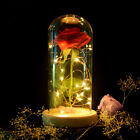 Red Enchanted Rose Glass Lamp Dome Valentine Led Red Rose Lighted Gift