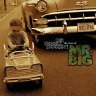 Mr Big - Big Bigger Biggest! (CD Used Very Good)