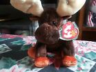 Ty Beanie Babies ZEUS RARE RETIRED with MULTIPE ERRORS 2002  NEW AUTHENTIC