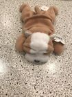 Ty Beanie Baby wrinkles the Dog  DOB May 1. 1996 MWMT