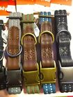 REDDY WEBBED DOG COLLAR VARIOUS SIZES AND COLORS BRAND NEW