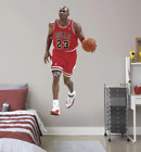 2016 Fathead Elite NBA Wall Decals 19