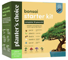 Bonsai Starter Kit The Complete Growing Kit to Easily Grow 4 Bonsai Trees from