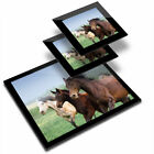 Glass Placemat  2x Coaster Mare Foal Horse Pony Girls 2340