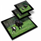 Glass Placemat  2x Coaster Shetland Pony Foal Horse Kids Girls 24183