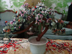 Vintage Chinese Jade rose Peaking glass Tree Asian Sakura Bonsai Excellent