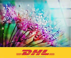 Extra Large Wall Art Tempered Glass Printing Wall Decor Home Decoration Painting