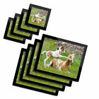 4x Glass Placemates  Coasters Horse  Foal Horses Playing 3946