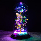 Galaxy Rose Flower LED Gift Beauty And The Beast Glass Dome Light Up Decoration