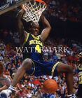 Chris Webber Dunk 8x10 Color Photo Michigan Wolverines Fab Five NCAA Basketball