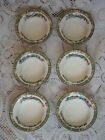 6 Indian Tree Pudding, Fruit Or Desert Bowls By Myott, Son & Co. England