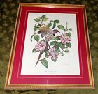 VINTAGE GESSO FRAMED S HENDERSON ALABAMA STATE BIRD & FLOWER ORIGINAL PAINTING