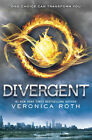 VERONICA ROSS BOOK MOVIE DIVERGENT POSTER PRINT 22x34 NEW FREE SHIPPING