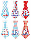 Baby Boy Monthly Stickers TIES NEW 12+ Just Born Red Blue Dots Gingham UNCUT