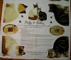Patty Reed Fluffy & Tabby  Stuffed Cat Fabric Panel