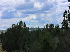 FANTASTIC 20 AC NORTHERN CALIFORNIA LOTS OF TREES ACCESS AWESOME VIEWS