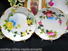 LIMOGES FRANCE HANDPAINTED SET OF 2 PLATES PRETTY DESIGN FLOWERS