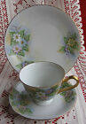 VTG BAVARIA GERMANY BAREUTHER HAND PAINTED Daisy Tea Cup Saucer Plate Trio