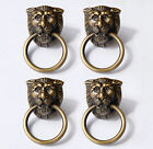LOT OF 4 PCS Antique BRASS LION Head Small Cabinet Door Brass Round KNOB Drawer