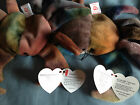 CLAUDE the Crab Ty Beanie Baby with multiple tag errors