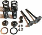 250cc VALVE ASSEMBLY SET FOR SCOOTERS WITH 4 STROKE LIQUID COOLED ENGINES