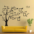 Family Tree Bird Wall Decal Photo Picture Frame Removable Home Art Decor Sticker