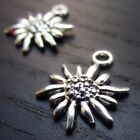 Edelweiss Flower Antiqued Silver Plated Charm Pendants C4080 5 10 20PCs