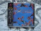 STEVEN ANDERSON Gypsy Power CD JAPAN OBI