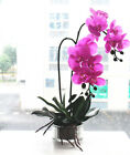 Artificial orchid flower bonsai real touch flower silicon orchid 1 set